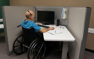 Как ветерану труда получить земельный участок в 2020 году: куда подавать заявление и необходимые документы
