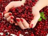 Самые интересные факты про клюкву: состав витаминов и лучшие рецепты народной медицины