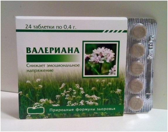 Валерьяна: полезные свойства и противопоказания для применения лекарства