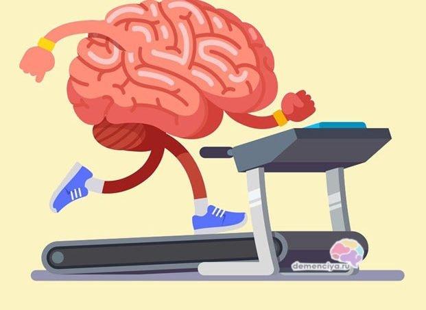 Упражнения для улучшения памяти у пожилых людей
