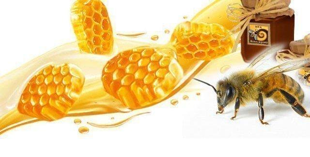 Полезные свойства меда и вред (прополис, маточное молочко) видео