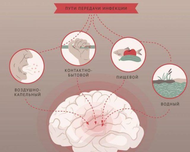 Как восстанавливать организм после менингита: диетическое питание, упражнения и физиотерапия