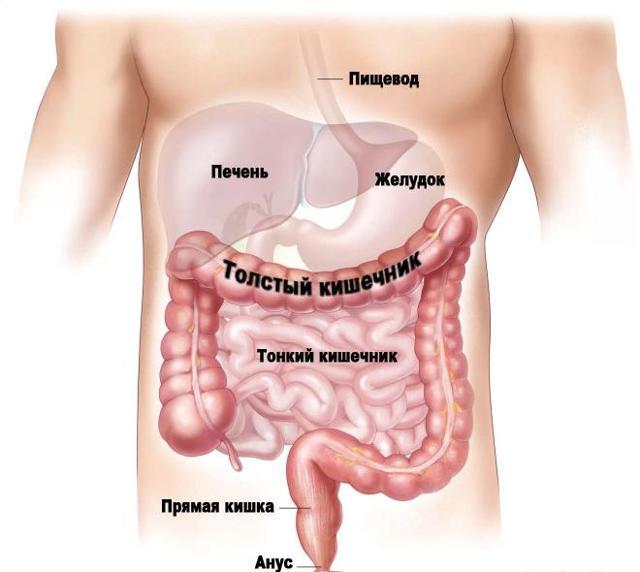 Орошение кишечника минеральной водой - показания и лечебный эффект от гидроколонотерапии