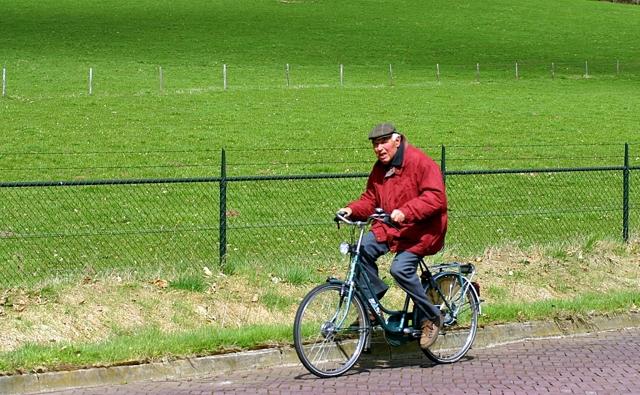Агрессия у пожилых людей - варианты решения проблемы
