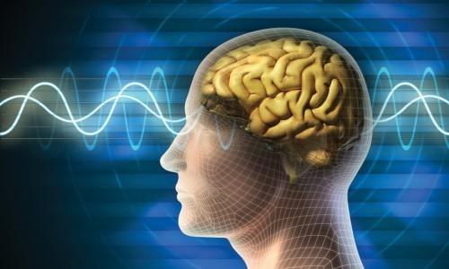 Питание при заболевании Альцгеймера: рекомендации по составлению меню