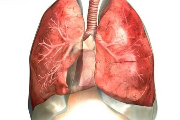Лечение хронического атрофического бронхита: специализированные препараты