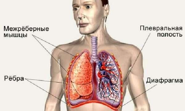 Неотложная помощь при спонтанном пневмотораксе: рекомендации врачей